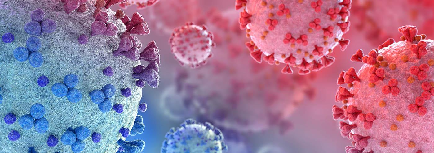Virus cells